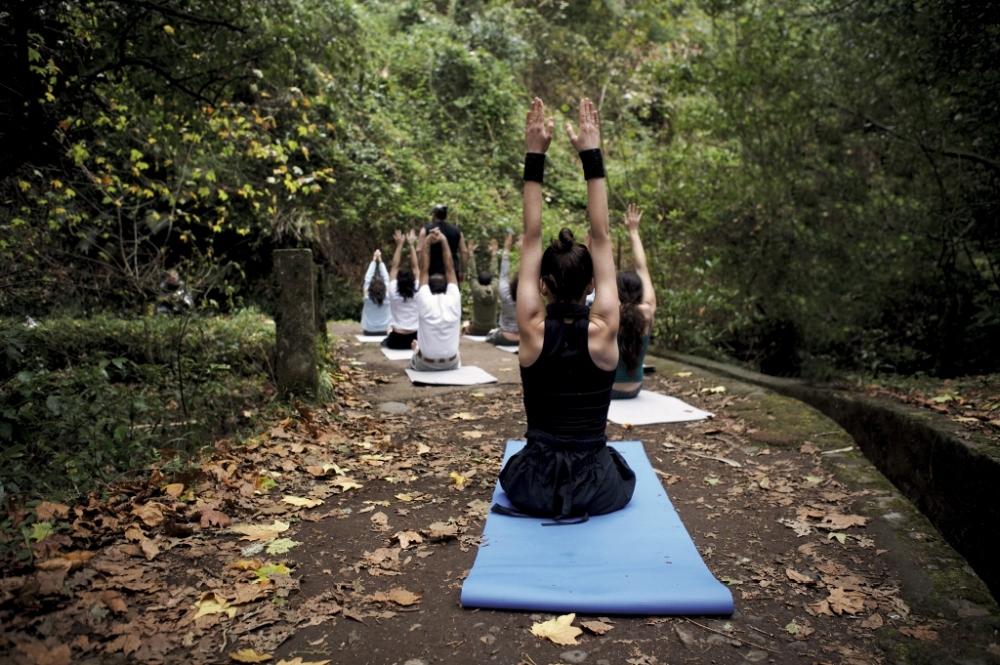 yoga-floresta-pessoas